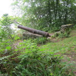 Cannon at Ballynahinch