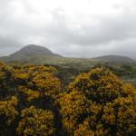 Connemara - 12 Bens