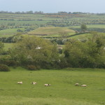 Dowth - view from Knowth