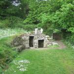 St. Declan's Well 2